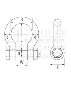 300 1113 Bow Shackle With Safety Pin  Nut Grade S AS2741 6 1 drawing