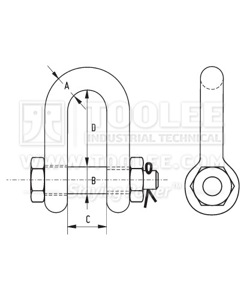 500 5710 Stainless Steel Dee Shackle Bolt Type with Safety Pin  Nut US SPEC drawing